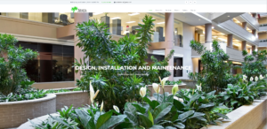 Aralia Interior Plantscaping Website | Yalda Nasirian Portfolio