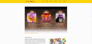 Solange Art Studio Website | Yalda Nasirian Portfolio | Website Design